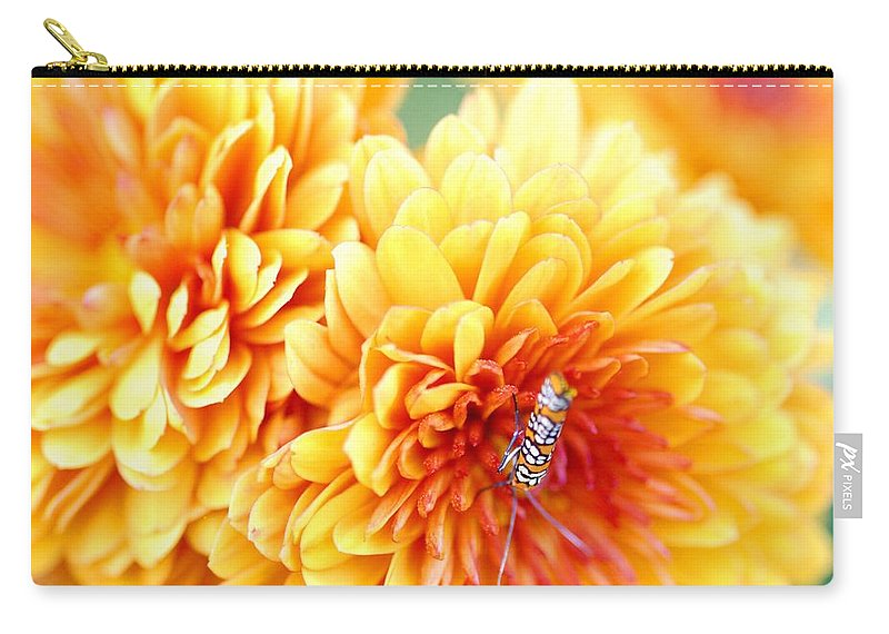 Alianthus Webworm Moth Carry-all Pouch featuring the photograph Ailanthus Webworm Visits The Marigold by Optical Playground By MP Ray