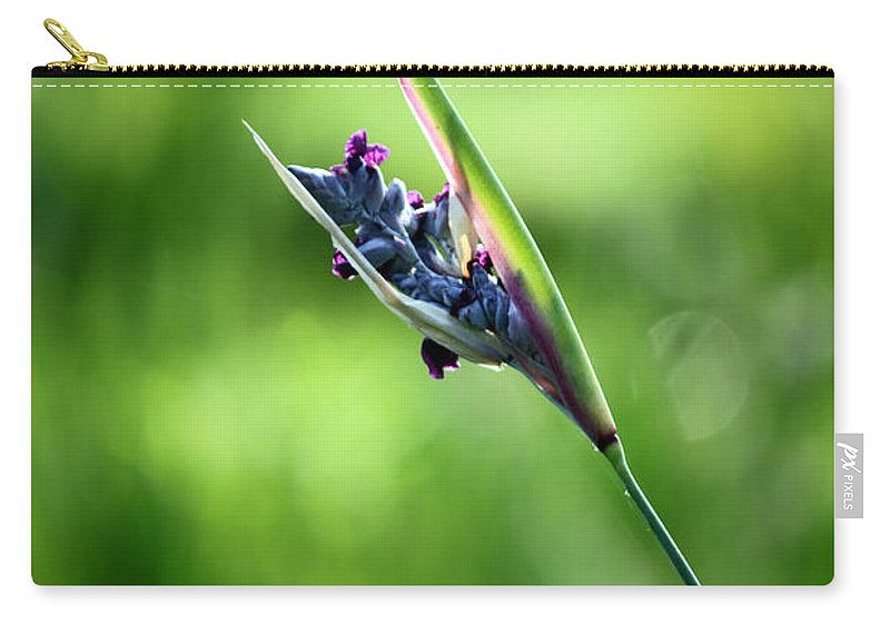 Flower Carry-all Pouch featuring the photograph Marsh Flower by Carolyn Stagger Cokley