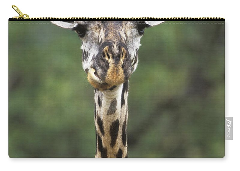 Mp Carry-all Pouch featuring the photograph Masai Giraffe Serengeti Np by Konrad Wothe