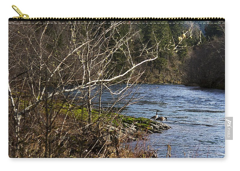 Wildlife Carry-all Pouch featuring the photograph Mates by Belinda Greb