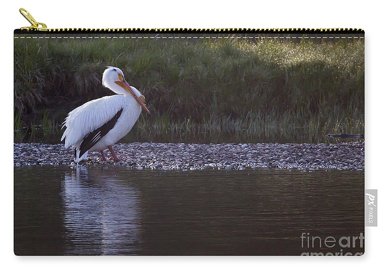 Bird Carry-all Pouch featuring the photograph Mature Pelican  #9337 by J L Woody Wooden