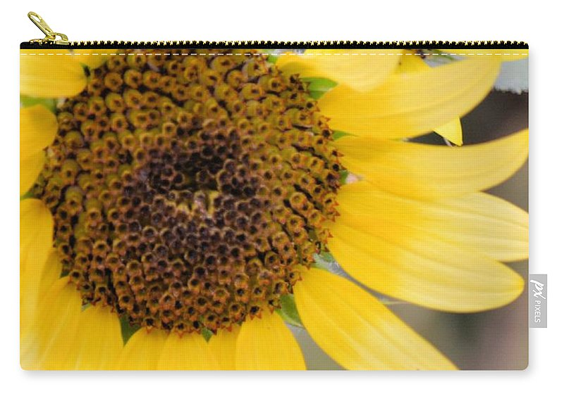 Maximilian And Friend Carry-all Pouch featuring the photograph Maximilian And Friend by Maria Urso