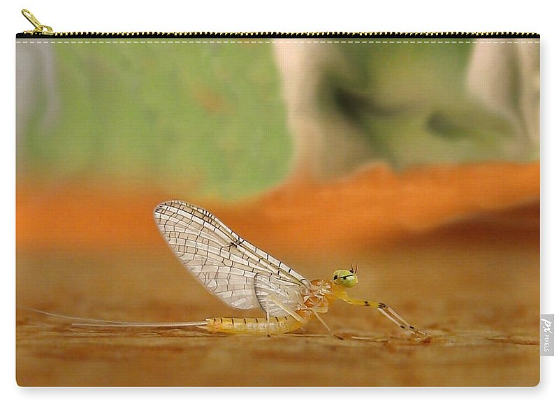 Mayfly Carry-all Pouch featuring the photograph Mayfly Art by Thomas Young