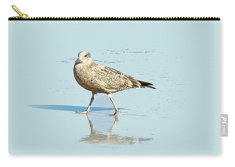 Seagull Carry-all Pouch featuring the photograph Me And My Shadow by Mother Nature