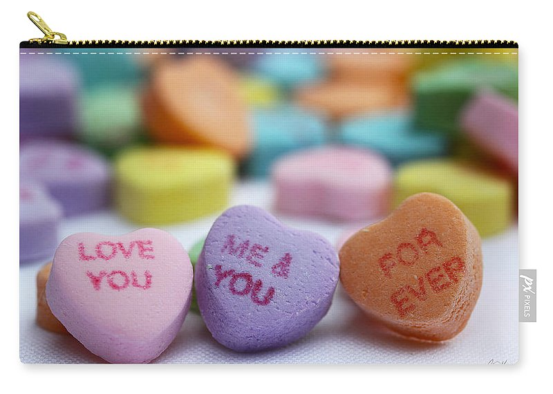 Valentines Carry-all Pouch featuring the photograph Me And You Forever by Diana Haronis