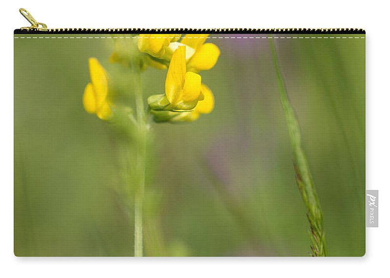 Bulgaria Carry-all Pouch featuring the photograph Meadow Vetchling by Jivko Nakev