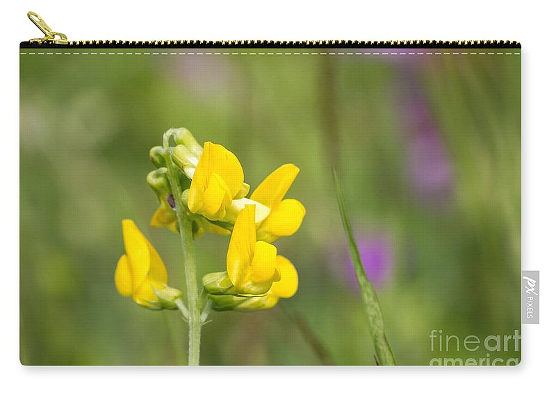 Bulgaria Carry-all Pouch featuring the photograph Meadow Vetchling Wild Flower by Jivko Nakev