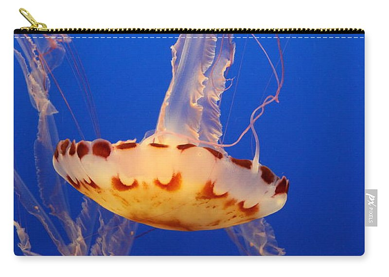 Medusa Jelly Carry-all Pouch featuring the photograph Medusa Jelly by Christiane Schulze Art And Photography