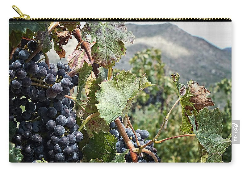 Wine Carry-all Pouch featuring the photograph Merlot Ready by Lucinda Walter