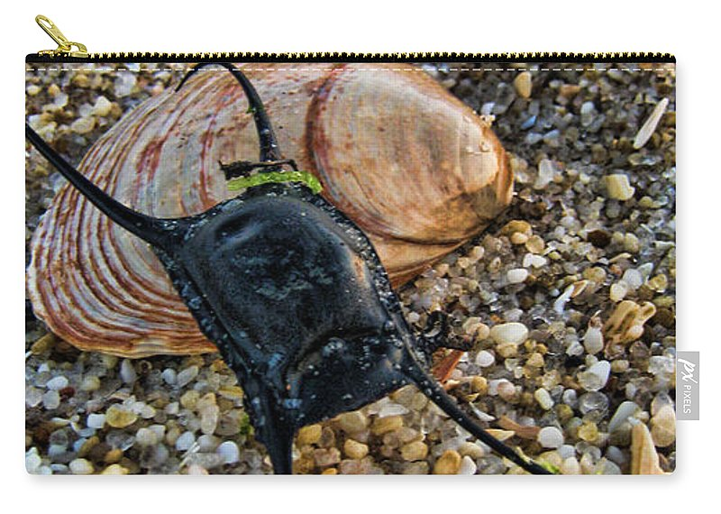Mermaids Purse Carry-all Pouch featuring the photograph Mermaids Purse by Heather Applegate