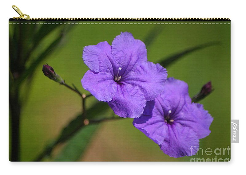 Petunia Carry-all Pouch featuring the photograph Mexican Petunia by Living Color Photography Lorraine Lynch