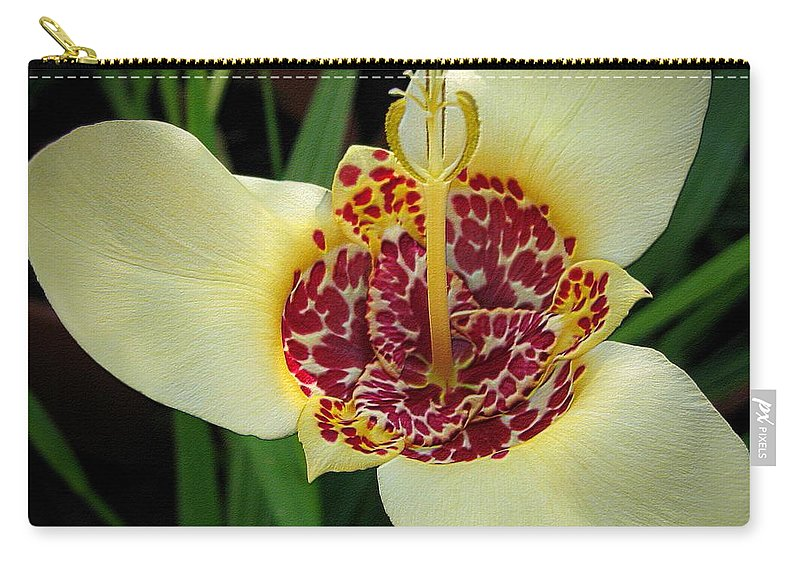 Mccombie Carry-all Pouch featuring the photograph Mexican Shell Flower by J McCombie