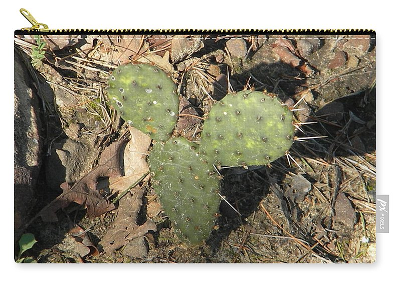 Mickey Carry-all Pouch featuring the photograph Mickey Mouse Cactus by Nathanael Smith