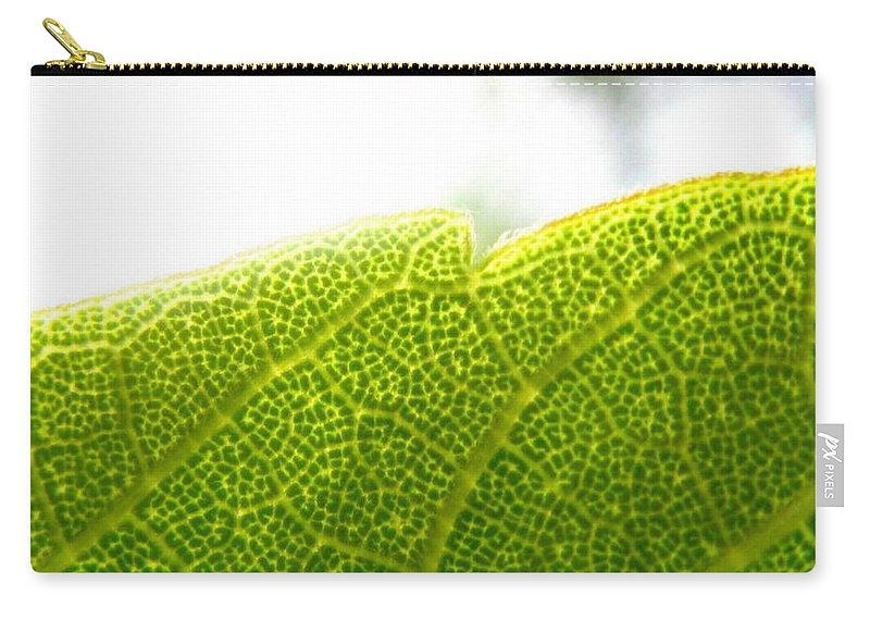 Leaf Carry-all Pouch featuring the photograph Micro Leaf by Rhonda Barrett