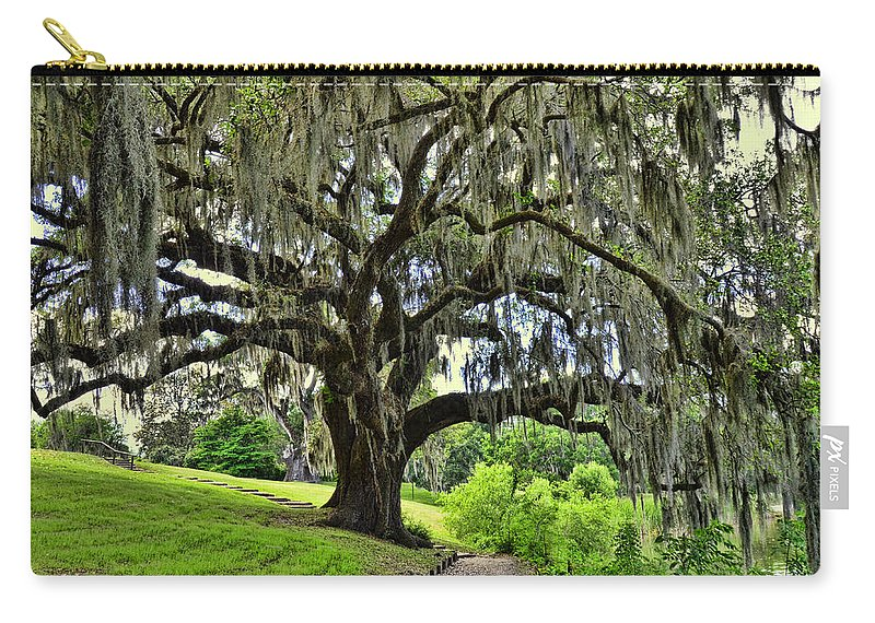 Forest Carry-all Pouch featuring the photograph Middleton Place Oak by Allen Beatty