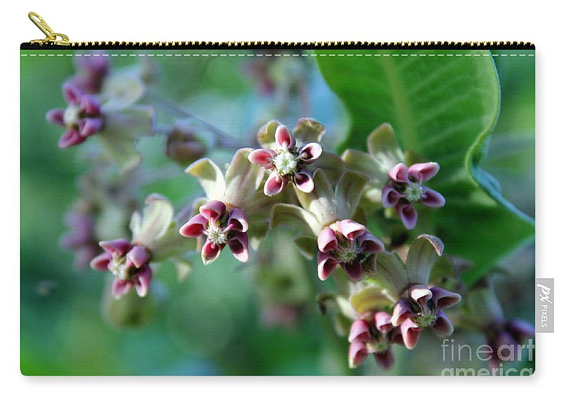 Milkweed Bloom Carry-all Pouch featuring the photograph Milkweed Bloom by Renee Croushore