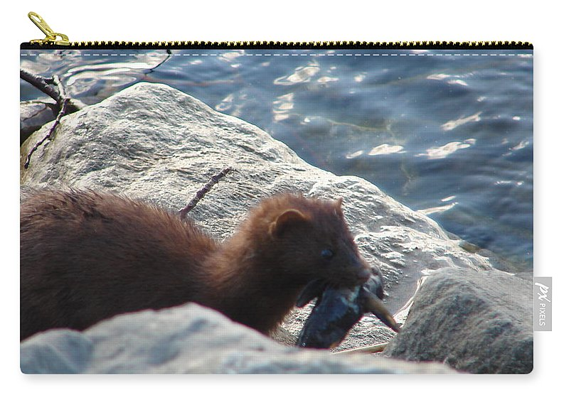 American Mink Carry-all Pouch featuring the photograph Mink with a Round Goby by Randy J Heath