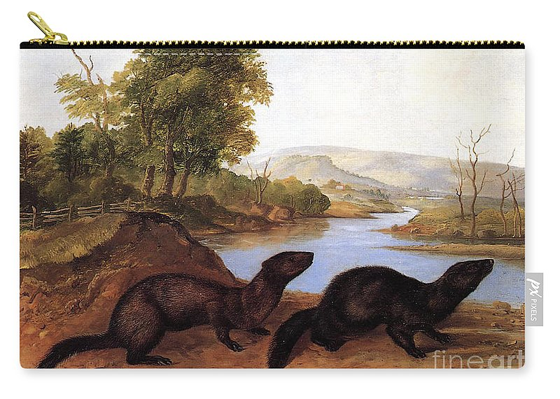 Mustelid Carry-all Pouch featuring the painting Minks by Audubon