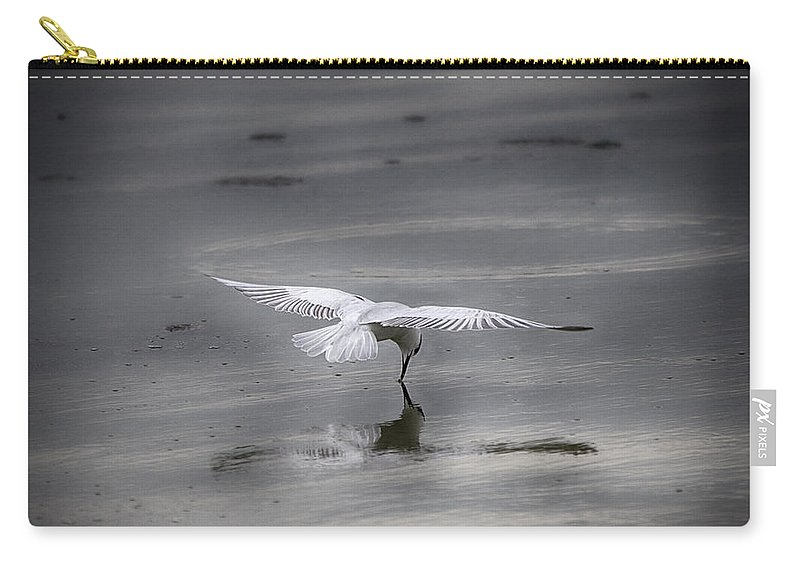 Bird Carry-all Pouch featuring the photograph Mirror-mirror............ by Douglas Barnard