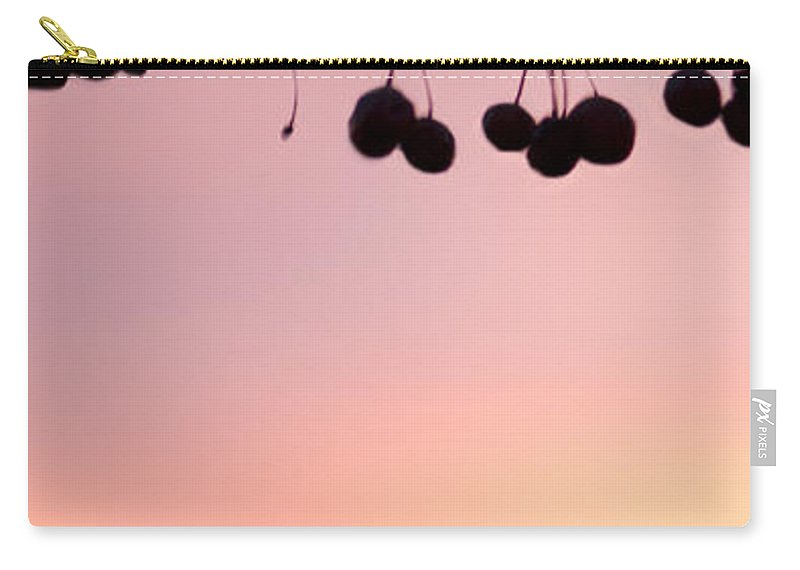 Sunset Carry-all Pouch featuring the photograph Missing One by Betty LaRue