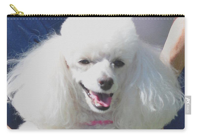 Animal Carry-all Pouch featuring the photograph Missy White Poodle by Jay Milo