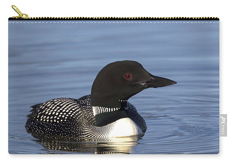 Doug Lloyd Carry-all Pouch featuring the photograph Mister Red Eye by Doug Lloyd