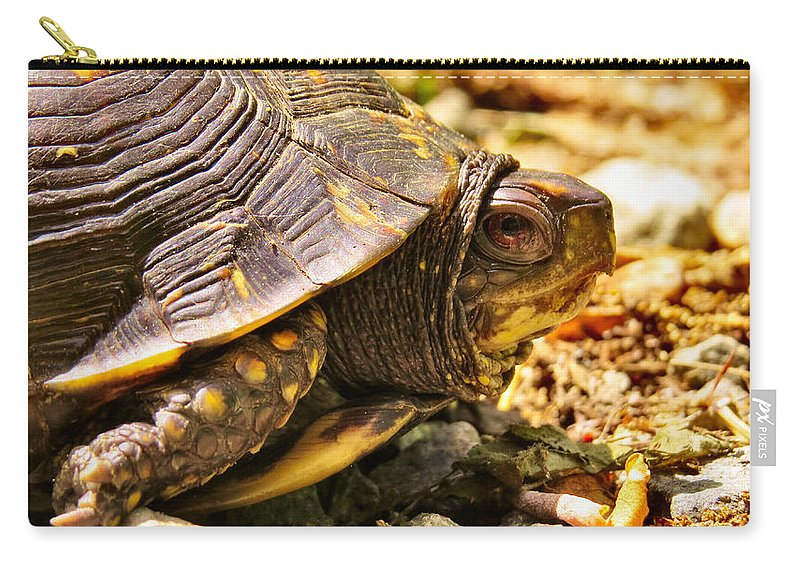 Nature Carry-all Pouch featuring the photograph Mohammad by Art Dingo