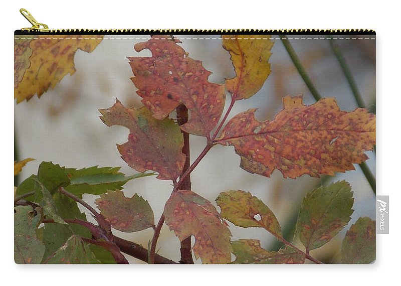 Carry-all Pouch featuring the photograph Molting Leaves by Brent Dolliver
