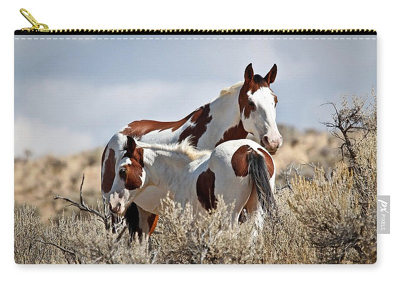 Horses Carry-all Pouch featuring the photograph Momma And Baby In The Wild by Athena Mckinzie