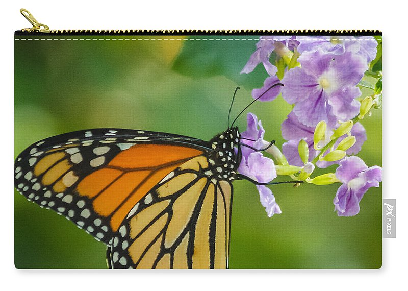 Florida Carry-all Pouch featuring the photograph Monarch Butterfly by Jane Luxton