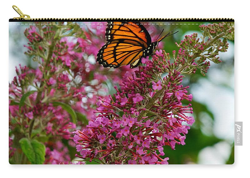 Butterfly Carry-all Pouch featuring the photograph Monarch Butterfly by Mark Dodd