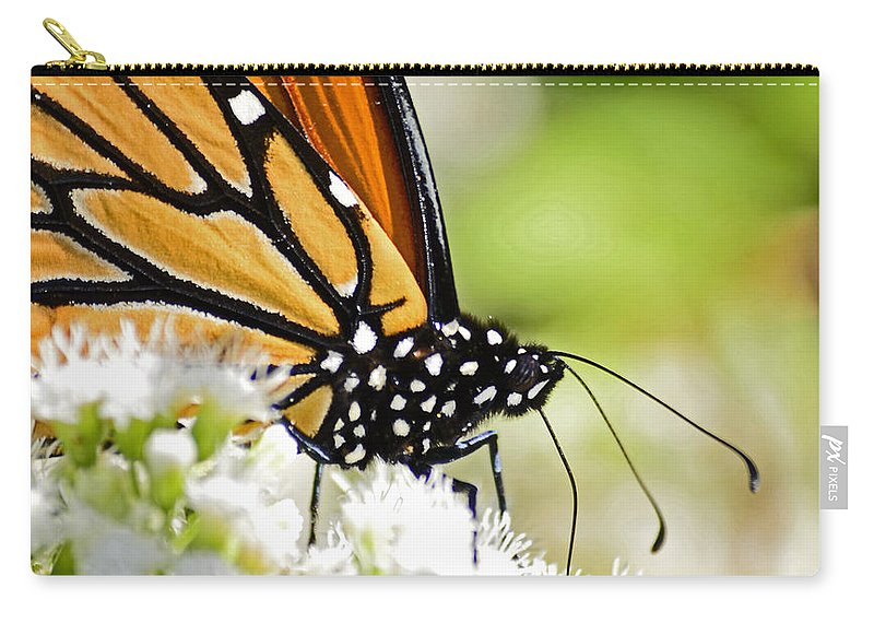 Butterfly Carry-all Pouch featuring the photograph Monarch Moment by Lori Tambakis