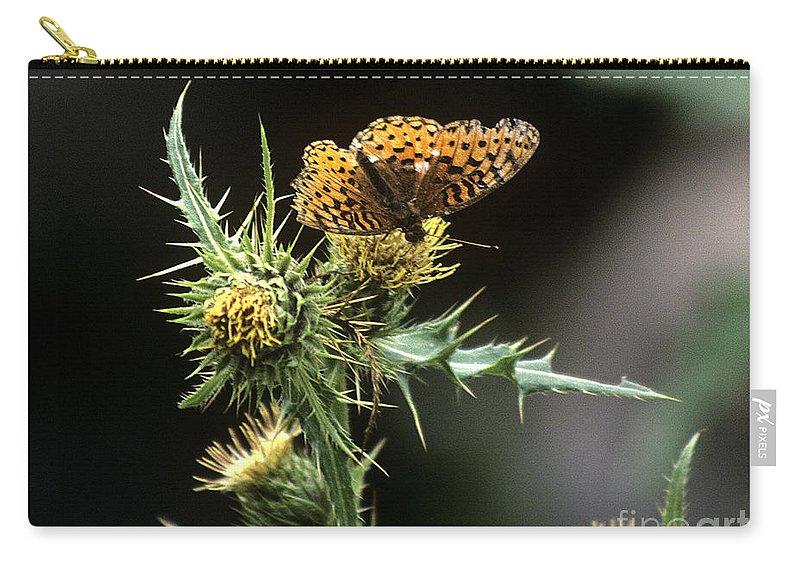 Butterfly Carry-all Pouch featuring the photograph Monarch On Thistle by Kathy McClure