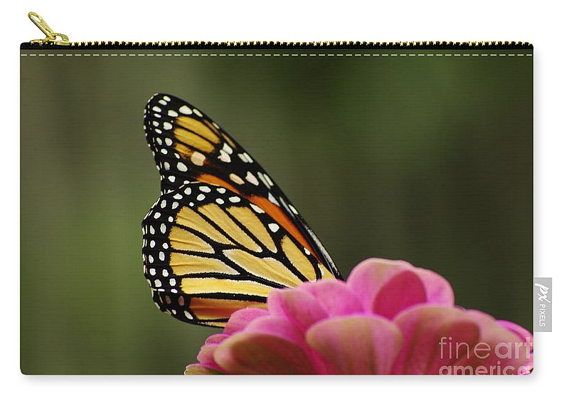Monarch Butterfly Carry-all Pouch featuring the photograph Monarch On Zinnia by Kitrina Arbuckle