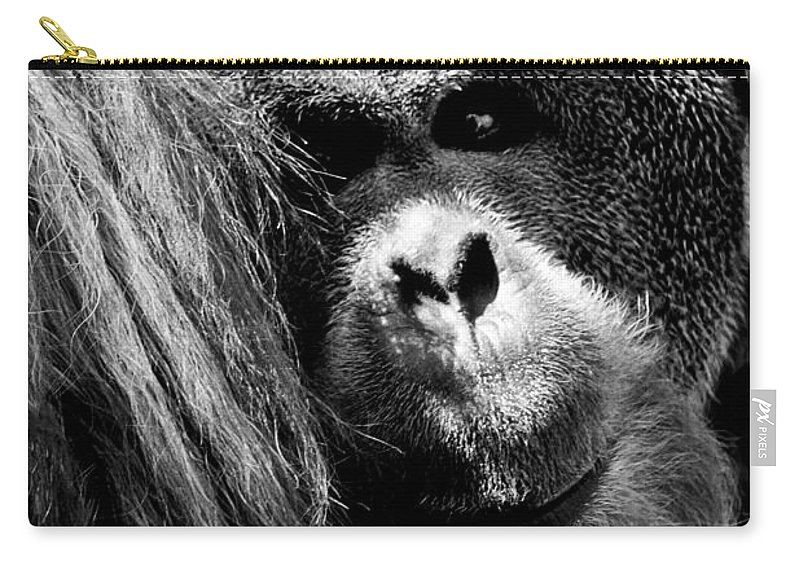 Animals Carry-all Pouch featuring the photograph Monkey by Gunnar Orn Arnason