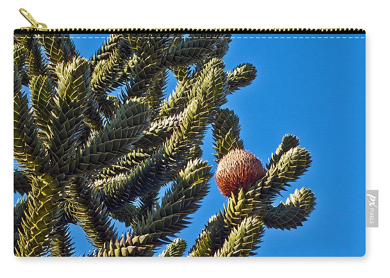 Green Carry-all Pouch featuring the photograph Monkey Puzzle Tree B by Tikvah's Hope