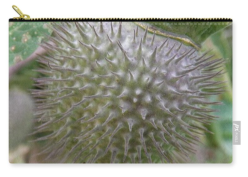 Moon Flower Carry-all Pouch featuring the photograph Moon Flower Seed Pod by Sara Raber