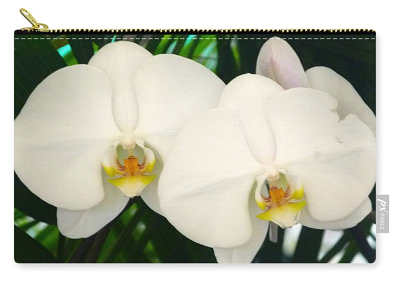 Moon Orchid Carry-all Pouch featuring the photograph Moon Orchid Pair by Richard Bryce and Family