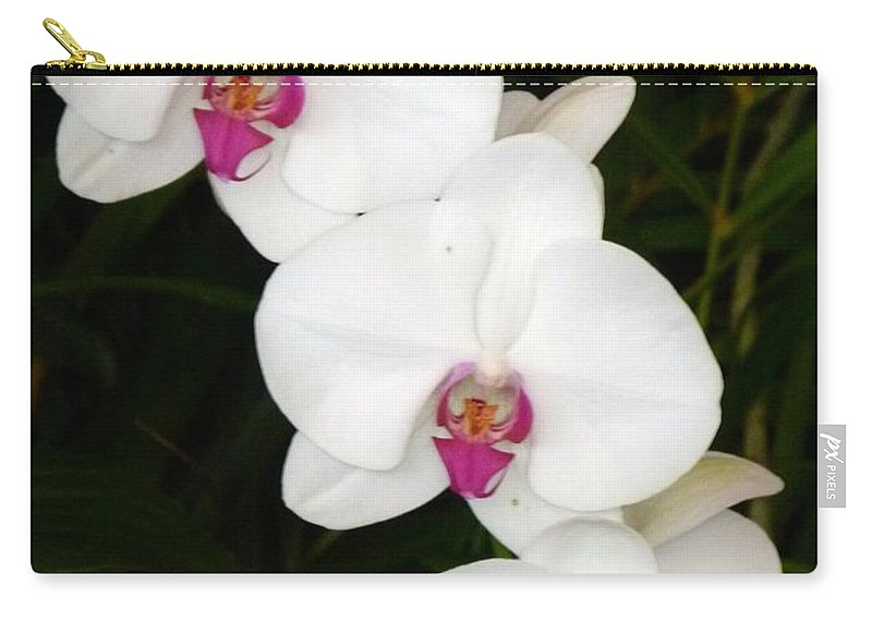 Moon Orchid Carry-all Pouch featuring the photograph Moon Orchid With Purple Center by Richard Bryce and Family