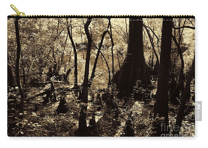 Moores Creek Battlefield Carry-all Pouch featuring the photograph Moores Creek Swamp by Tommy Anderson