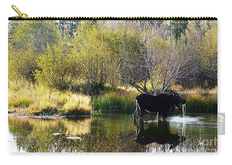 Moose Carry-all Pouch featuring the photograph Moose Reflection by Deanna Cagle