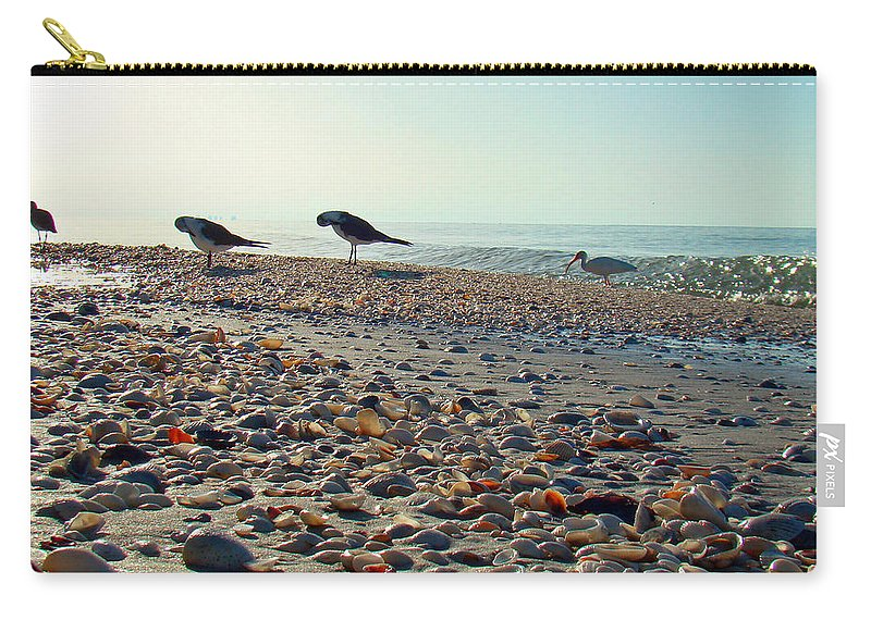 Ibis Carry-all Pouch featuring the photograph Morning Beach Preen by Nancy L Marshall