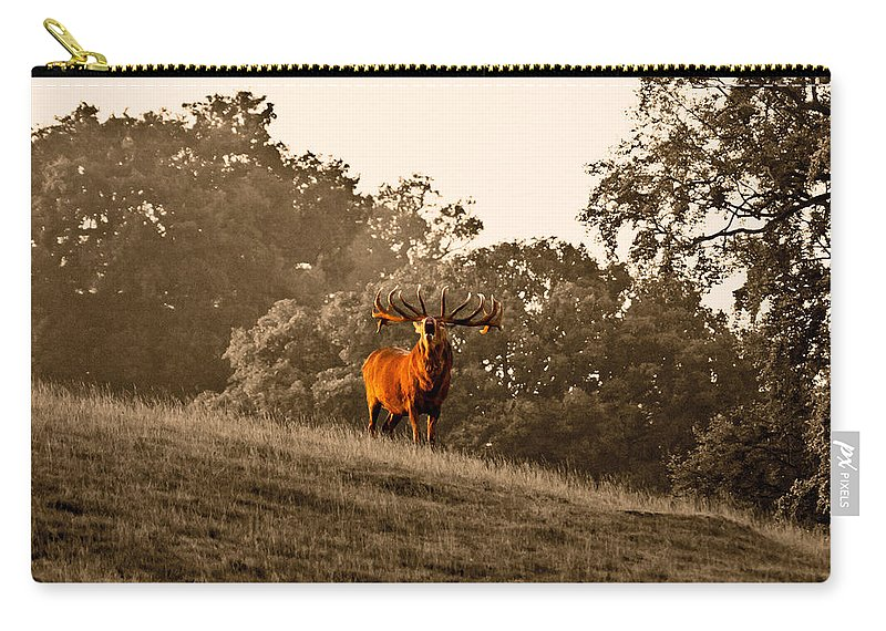 Red Deer Carry-all Pouch featuring the photograph Morning Call by Scott Carruthers