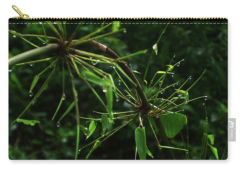 Dew Carry-all Pouch featuring the photograph Morning Dews by Xueling Zou