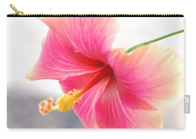 Hibiscus Carry-all Pouch featuring the photograph Morning Hibiscus In Gentle Light - Square Macro by Connie Fox
