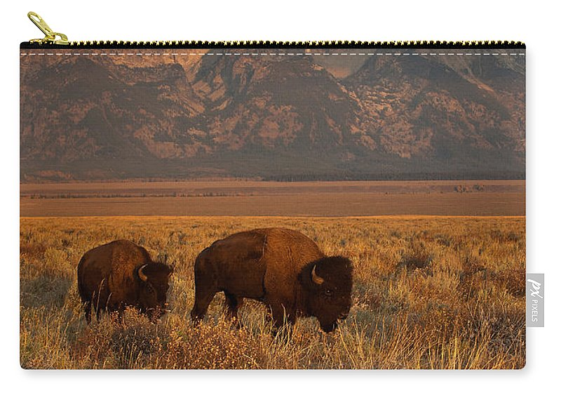 Grand Teton Carry-all Pouch featuring the photograph Morning Travels In Grand Teton by Sandra Bronstein