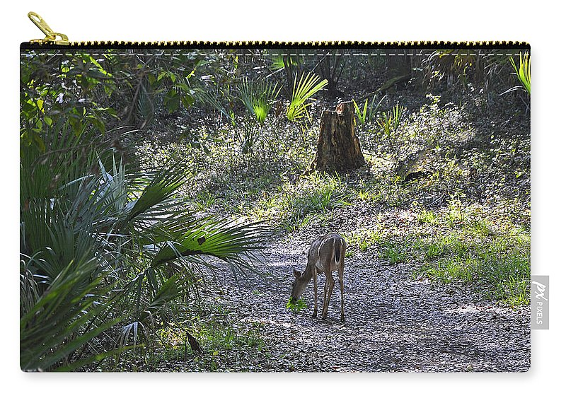 Animals Carry-all Pouch featuring the photograph Morning Visit by Deborah Good