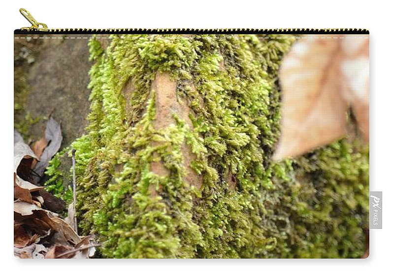 Mossy Rock Abstract 2013 Carry-all Pouch featuring the photograph Mossy Rock Abstract 2013 by Maria Urso