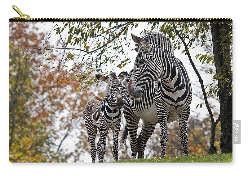 Animal Carry-all Pouch featuring the photograph Mother And Child by Marcia Colelli