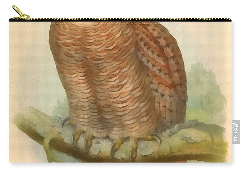 John Gould Carry-all Pouch featuring the digital art Mottled Wood Owl by John Gould